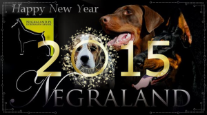 hapy-new-year.negraland